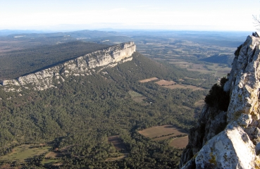 CAZEVIEILLE -  PIC SAINT-LOUP-herault