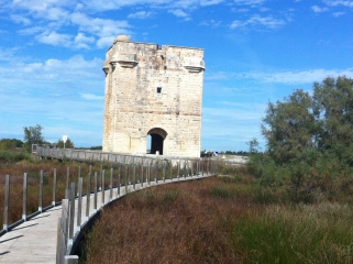AIGUES-MORTES - TOUR CARBONNIERE-gard