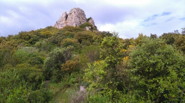 CABRIERES  - LES RUINES DU CHATEAU-herault
