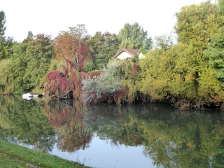 DE POISSY A SAINT GERMAIN   NATURE ET CULTURE-yvelines